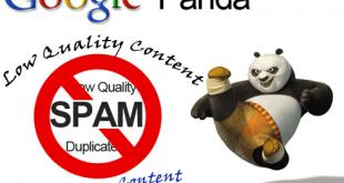 Google-Panda-Algorithm-How-To-Fix-Low-Quality-Content-Pages